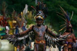 nasiona chia - podstawowe źródło energii azteckich wojsk
