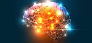 4 szklanki wody na czczo przyspiesza mózg