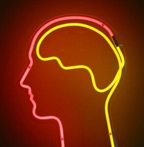 Spirulina - Spirulina wspiera funkcje mózgu
