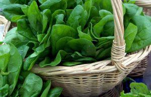 trawienie - warzywa liściaste do wszystkiego
